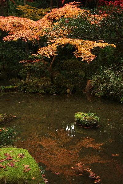 IMG_2678.jpg百済寺写り込み-78.jpg