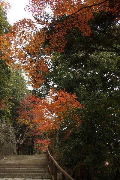 IMG_2405.jpg永源寺-石段.jpg