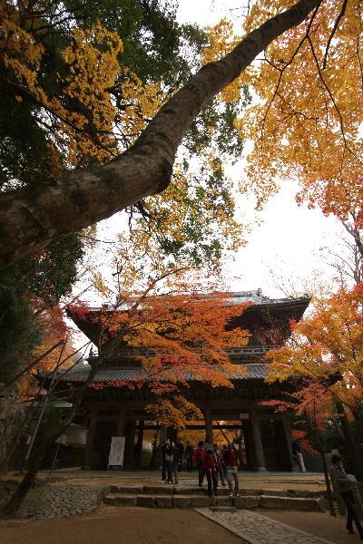 IMG_2438.jpg永源寺-山門.jpg