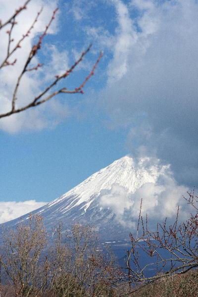 IMG_4305.jpg 岩本山-05.jpg