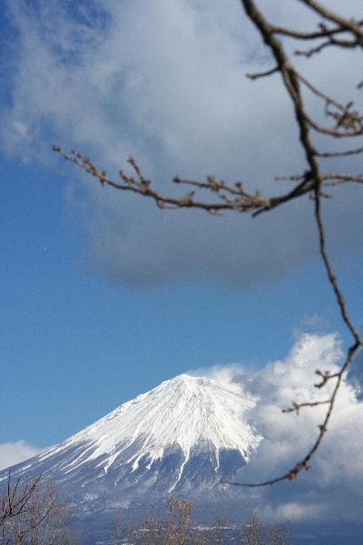 IMG_4315.jpg 岩本山-15.jpg