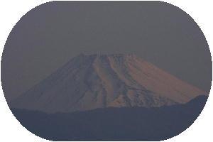 IMG_6968 3.23 朝.jpg