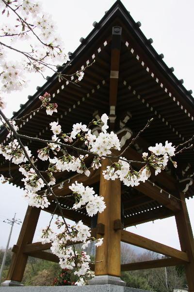 IMG_7243.jpg 43-上澤寺.jpg