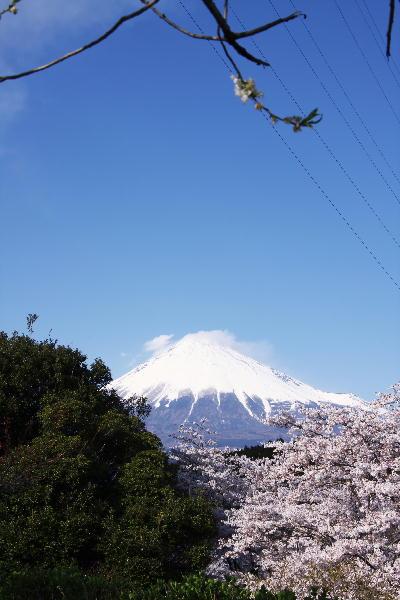 IMG_7287.jpg 87-岩本山.jpg
