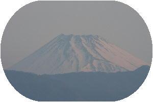 IMG_7451 4.7 朝.jpg