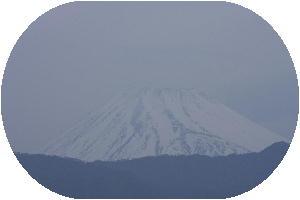 IMG_7786 4.17 朝.jpg