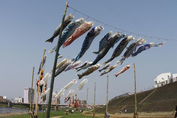 IMG_8171.jpg 狩野川めざし風鯉のぼり.jpg