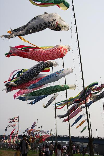 IMG_8167.jpg 67-狩野川の鯉のぼり.jpg