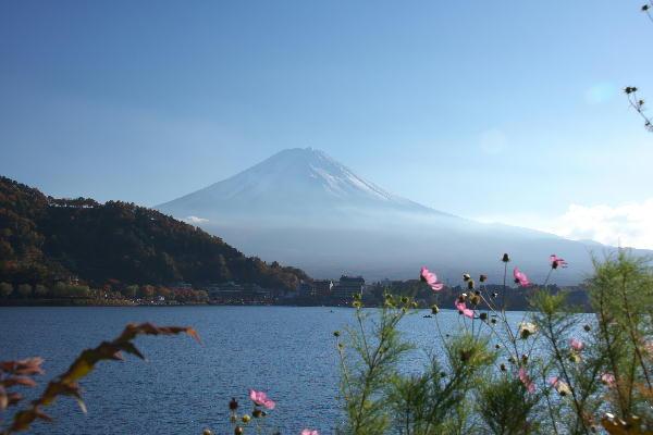 IMG_3650.jpg 河口湖-650-3333.jpg