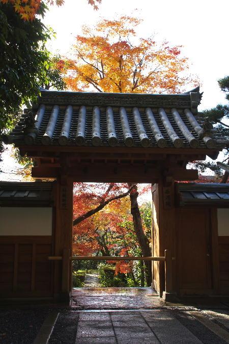 IMG_4589.jpg 竜安寺-589-4444.jpg