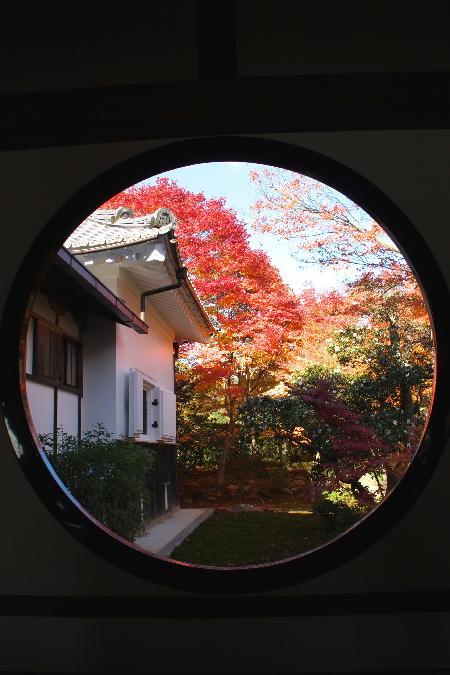 IMG_4723.jpg 悟りの窓-723-3333.jpg