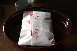 IMG_5118.jpg 大福梅-118.jpg