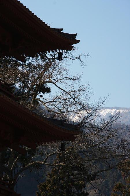 IMG_5476.jpg 五重塔の間-七面山.jpg