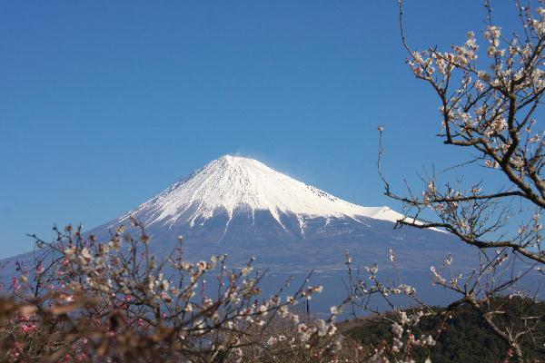 IMG_5641.jpg 岩本山公園-641-3333.jpg