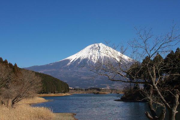 IMG_5700.jpg 田貫湖-700-3333.jpg