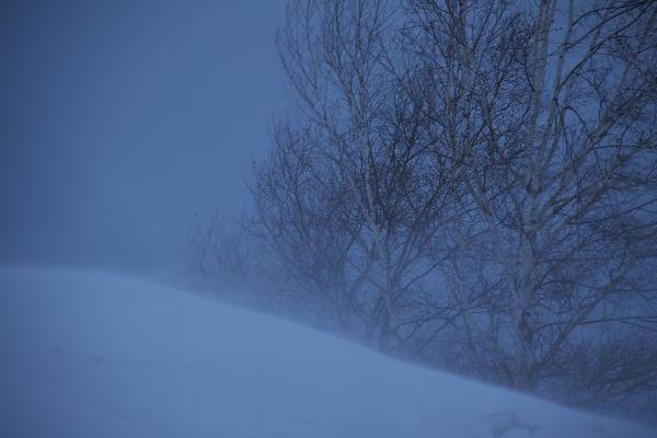 IMG_0751.jpg 地吹雪-751-4444jpg.jpg