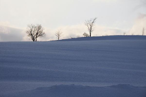 IMG_1238.jpg 雪原の夕陽-238-3333.jpg