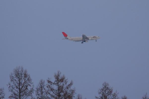 IMG_1001.jpg 赤羽の上空JAL-1001-4444.jpg