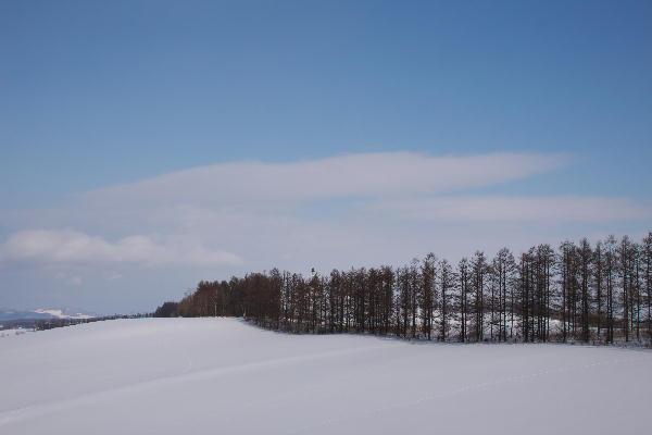IMG_1396.jpg 雪原の丘-396-3333.jpg