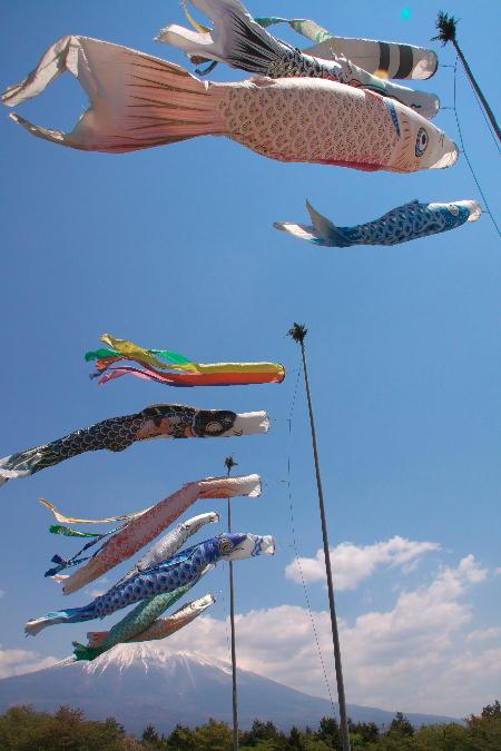 IMG_1769.jpg 鯉のぼり-769-3333.jpg