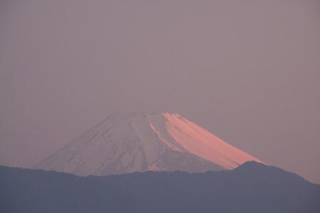 IMG_2583.jpg 5.21-440-今朝の富士山.jpg