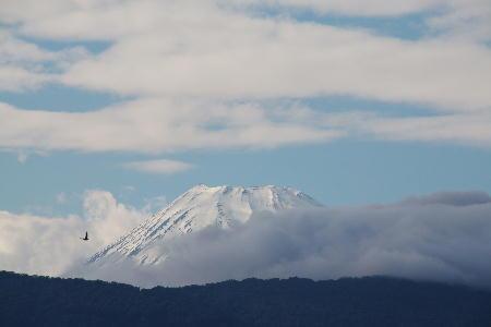IMG_2660.jpg 529-16.00-今日の富士山-3333.jpg