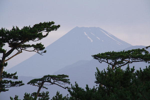 IMG_3984.jpg 千本浜の富士山-984-3333.jpg