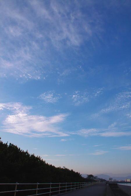 IMG_3992.jpg 千本浜-992-3333.jpg