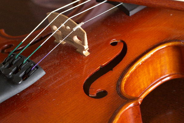 IMG_7458.jpg バィオリン-458-3333.jpg