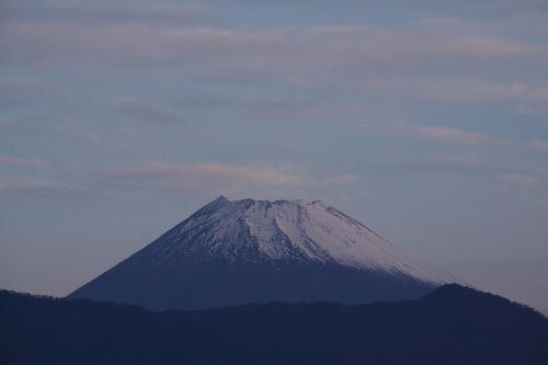IMG_8342.jpg 11.5-6.19-今朝の富士山.jpg