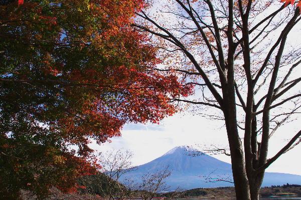 IMG_8358.jpg 田貫湖-358-3333.jpg