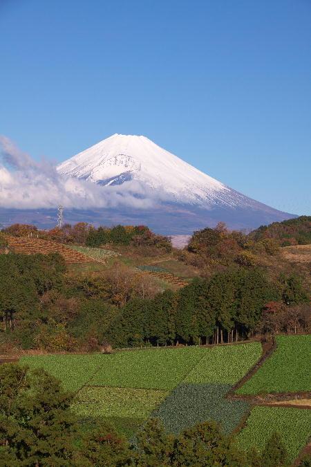 富士山-3.jpg