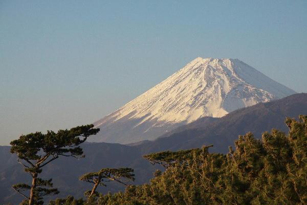 IMG_9595.jpg 千本の富士山 12.22-15.46.jpg