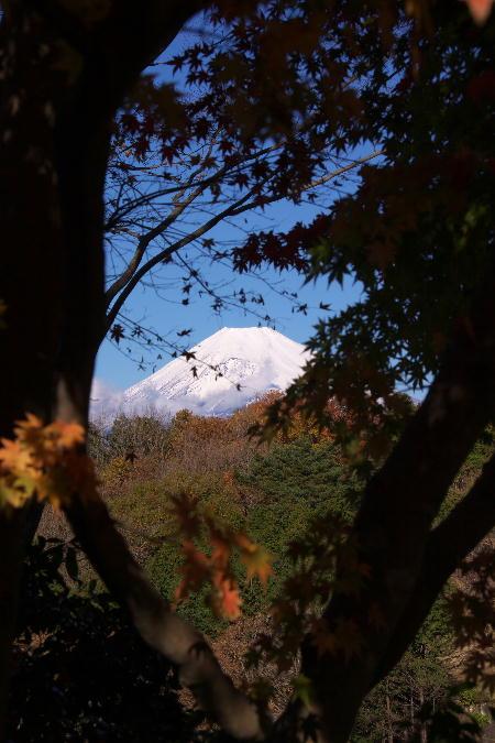 富士山-10.jpg