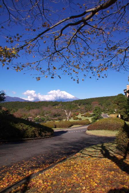 富士山-12.jpg
