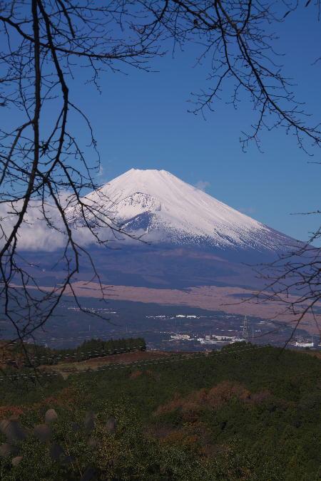 富士山-16.jpg