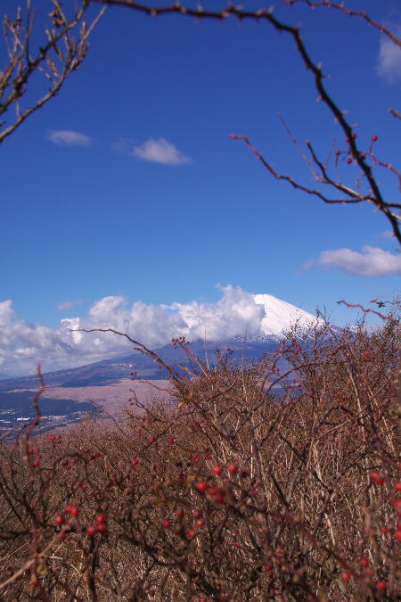 富士山-17.jpg