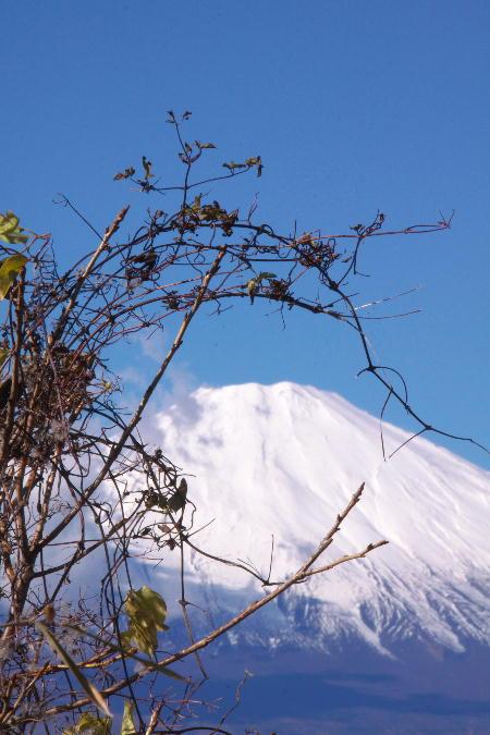 富士山-22.jpg