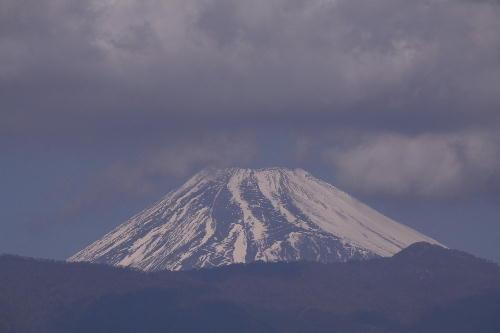 _MG_9973.jpg 1.18-11.24-今日の富士山.jpg