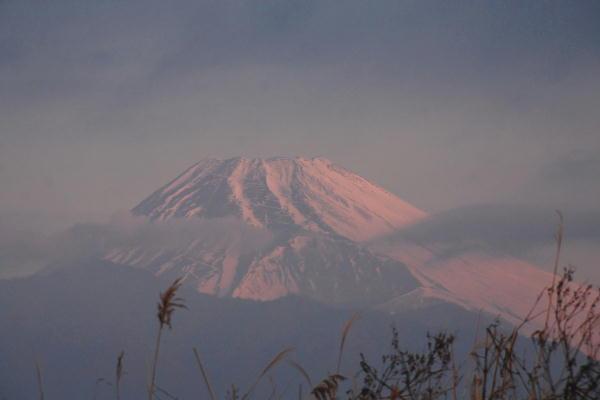 _MG_0032.jpg 1.20-7.04-今朝は清水町からの富士山2.jpg