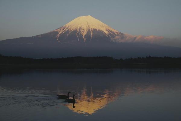 _MG_1308.jpg 田貫湖 17.12.jpg