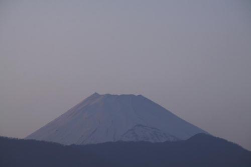 _MG_9872.jpg 3.16-17.53-夕方の富士山.jpg