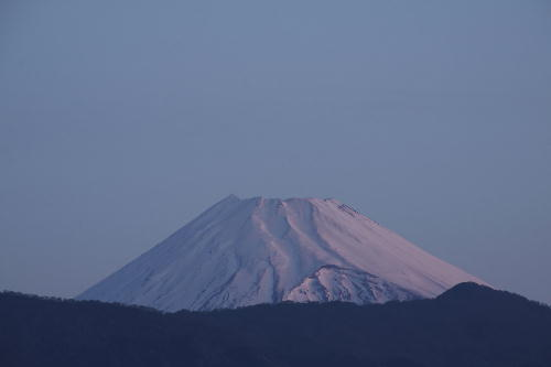 _MG_9998.jpg  3.22-5.45-今朝の富士山-1.jpg