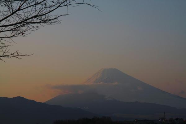函南からの富士山.jpg
