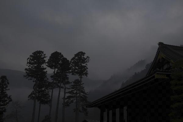 身延朝の桜-4 29-6.29.jpg