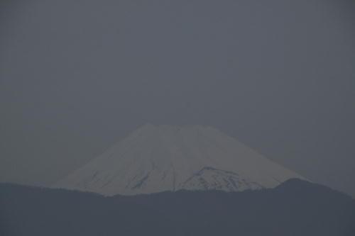 _MG_0827.jpg 4.11-5.38-今朝の富士山.jpg