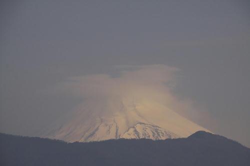 _MG_1115.jpg 4.19-7.26-今朝の富士山1.jpg