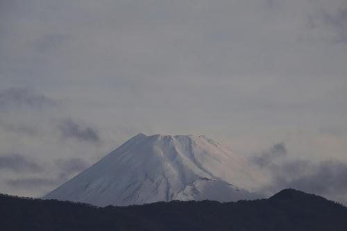 _MG_1190.jpg  4.21-5.40-今朝の富士山.jpg