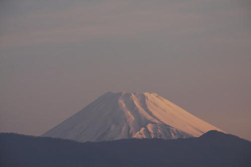 _MG_1365.jpg 4.26-5.15-今朝の富士山.jpg