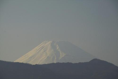 _MG_1408.jpg 4.29-1701-今日の富士山.jpg